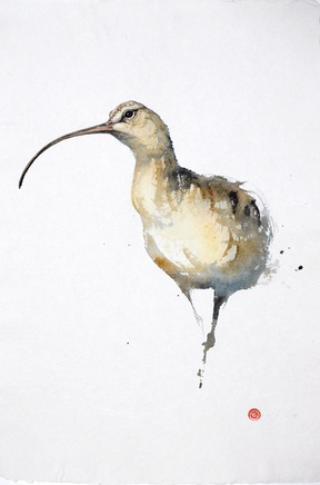<span class=%22title%22>Curlew</span>